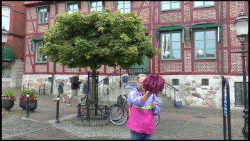 Mit Dem Wohnmobil Nach Südskandinavien – Von Herbert Pangerl