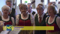 Frühlingsfest Der Ortsgruppe Krumbach