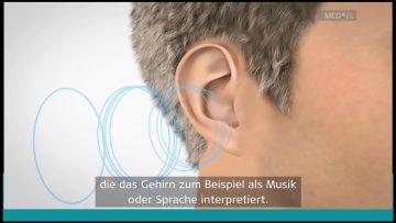 """""""Obleute Unterwegs…."""" NÖs Senioren Beim Konzert In Grafenegg"""