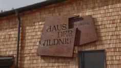 Ausflugstipp – Haus Der Wildnis 2021 009 01 Efz194